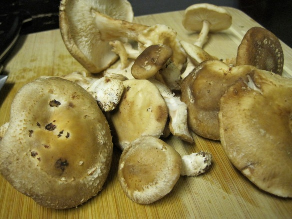 fresh shiitake mushrooms