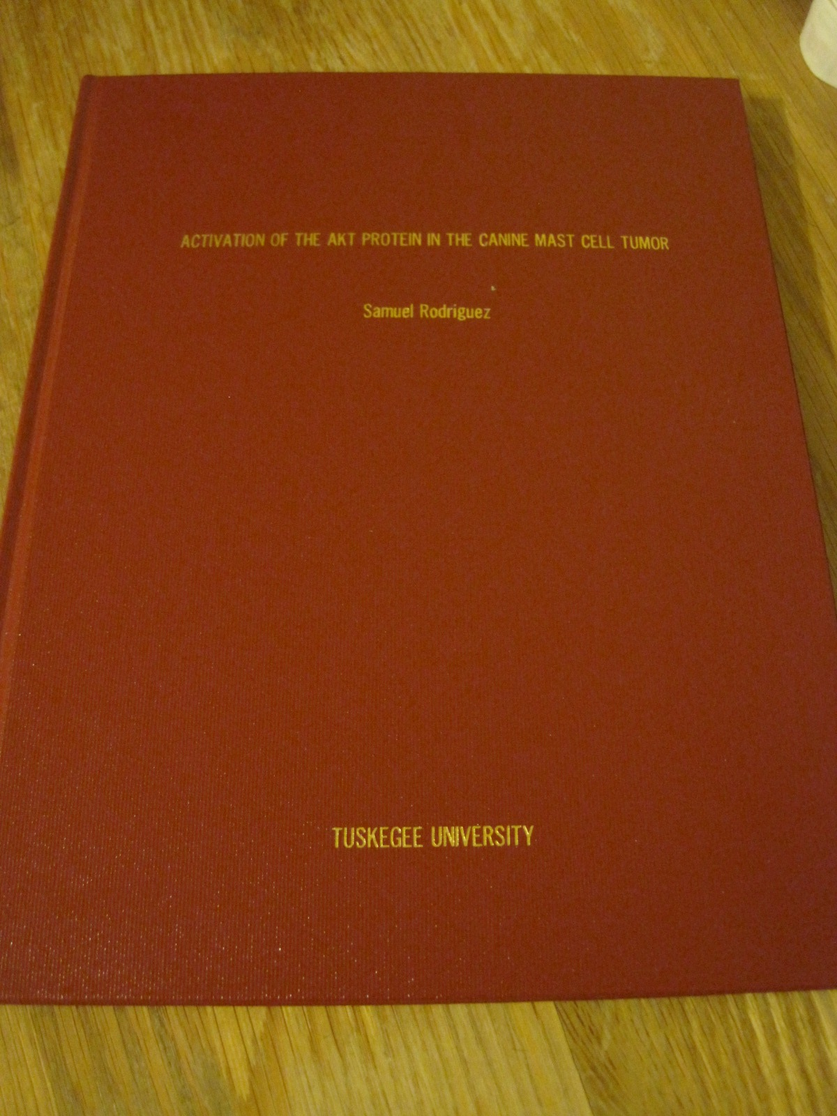 PhD thesis Hilde Stenuit